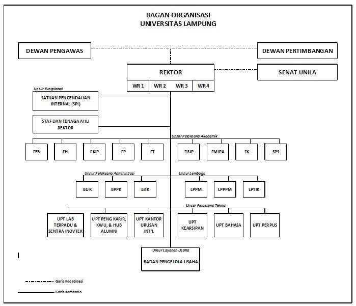 Struktur Organisasi Unila